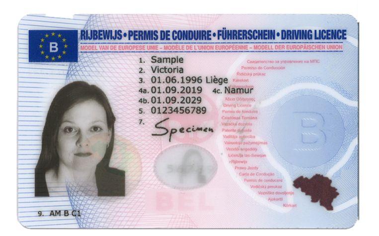 Belgium driver's license